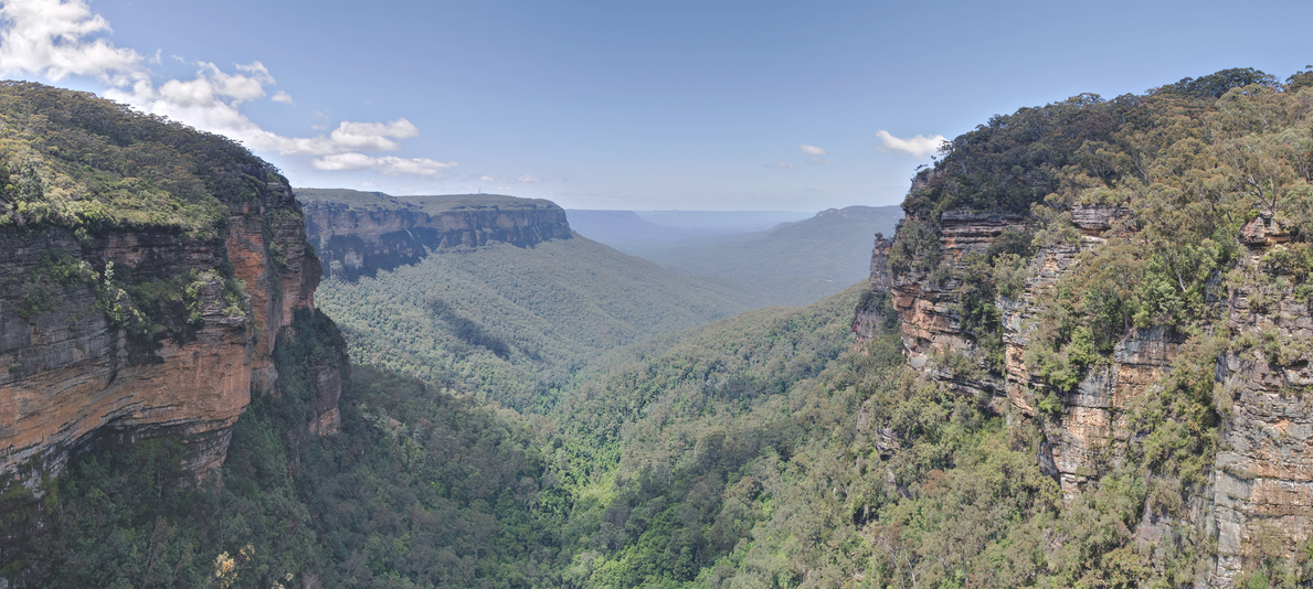 The Blue Mountains – Online